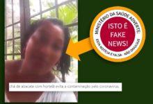 Photo of Chá de abacate com hortelã previne coronavírus – É FAKE NEWS!